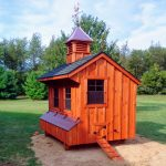 chicken-coop-in-michigan