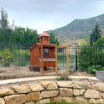 chicken coop story 1