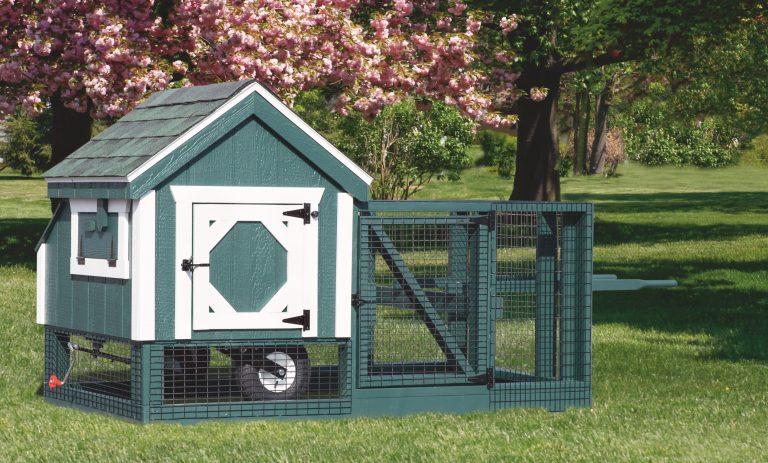 3x3 backyard chicken coops