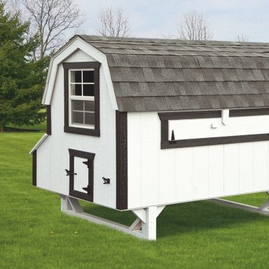 images of chicken coops 4x8 Dutch