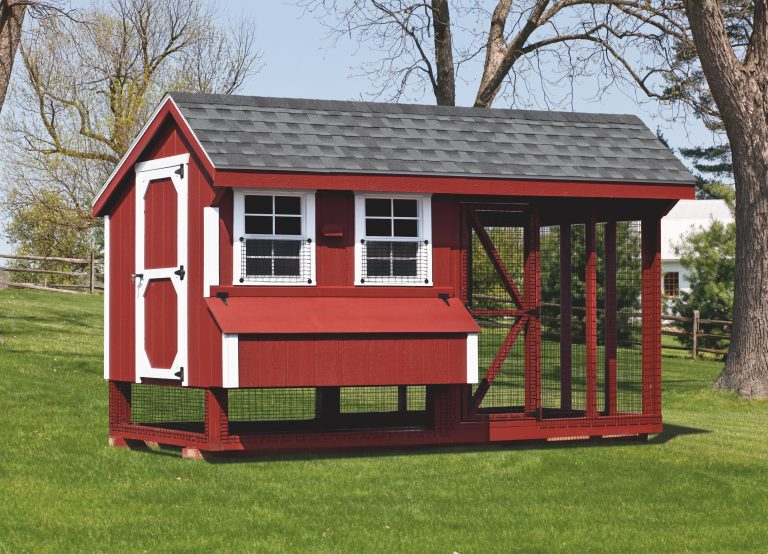 where-can-i-buy-chicken-coops
