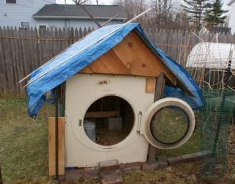 An old washer turned into a coop for raising chickens