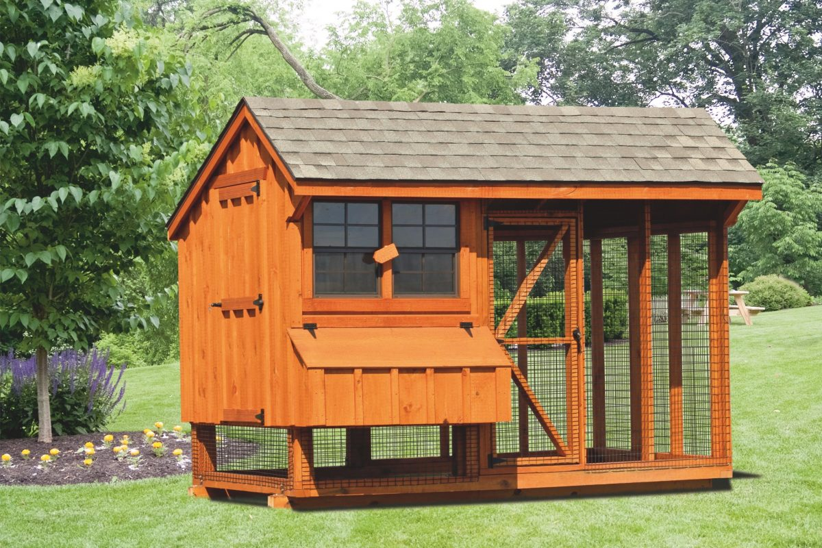 back yard chicken coops 6x10 combination