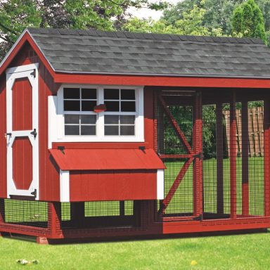 6x10 combination backyard chicken coop