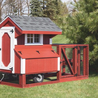 back yard chicken coops Q44T Painted Front