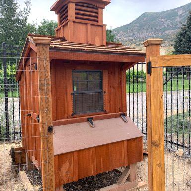amish chicken coop in utah 1