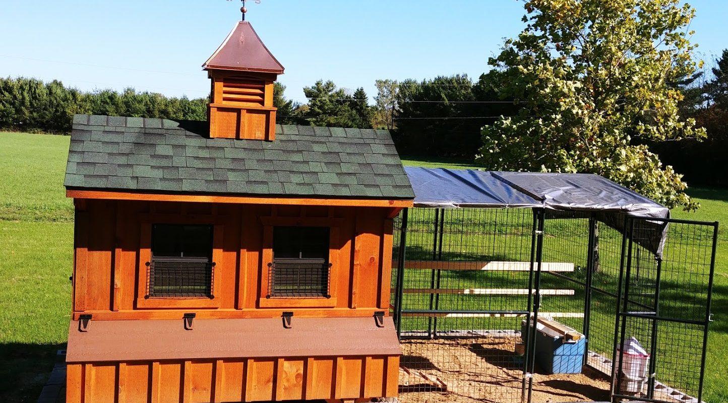 buy a chicken coop in michigan