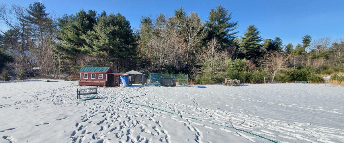 large chicken coop in winter