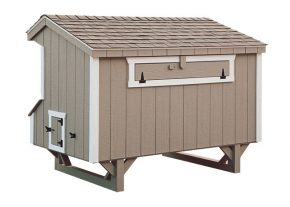 prefab chicken coops Clay Q48 Back View