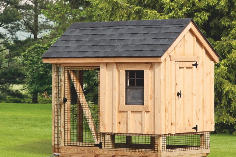 chicken coop and run A46C back B