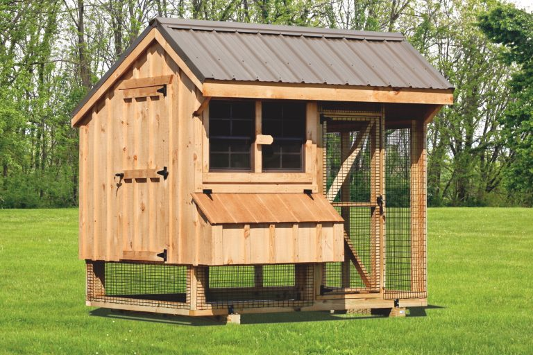 chicken coop and run 6x8 Combination