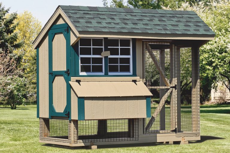 chicken coop and run 4x8 Combination 1