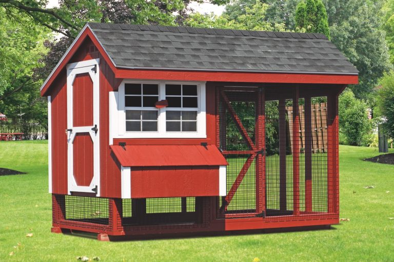 chicken coop and run 6x10 Combination 1