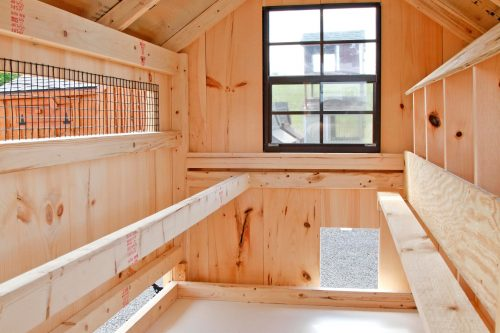 a frame chicken coop BB A46 8