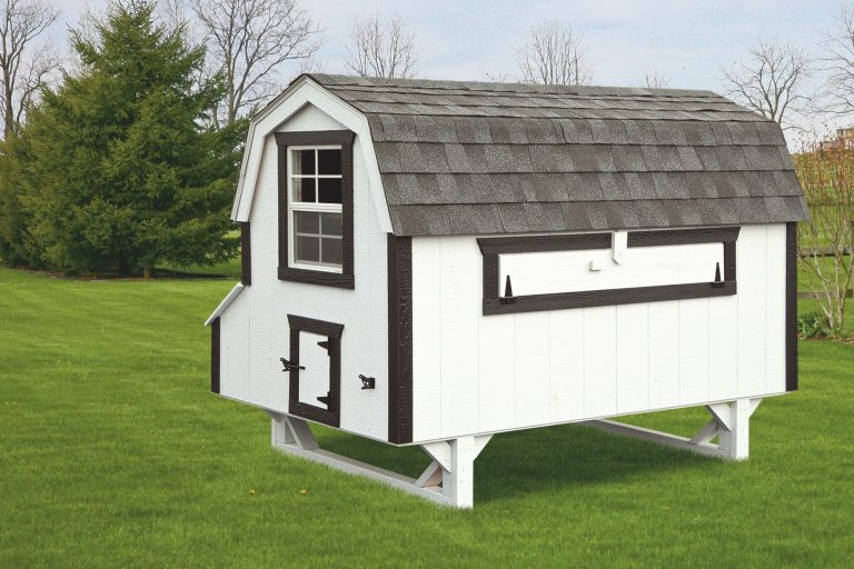 barn style chicken coops 4x8 Dutch