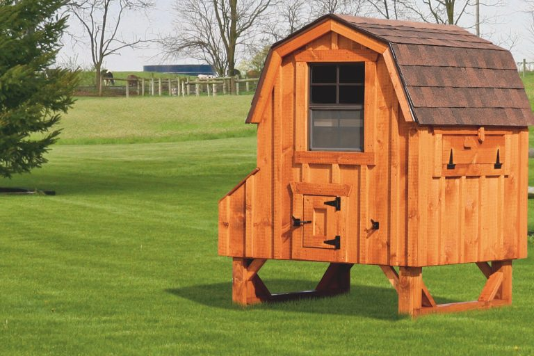 "barn style chicken coops 4x4 Dutch With board and batten siding 78"" high 14"" off ground 4 nesting boxes Cedar stain Walnut brown shingles"
