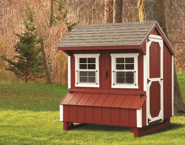 backyard chicken coops 5x6 Quaker With Duratemp