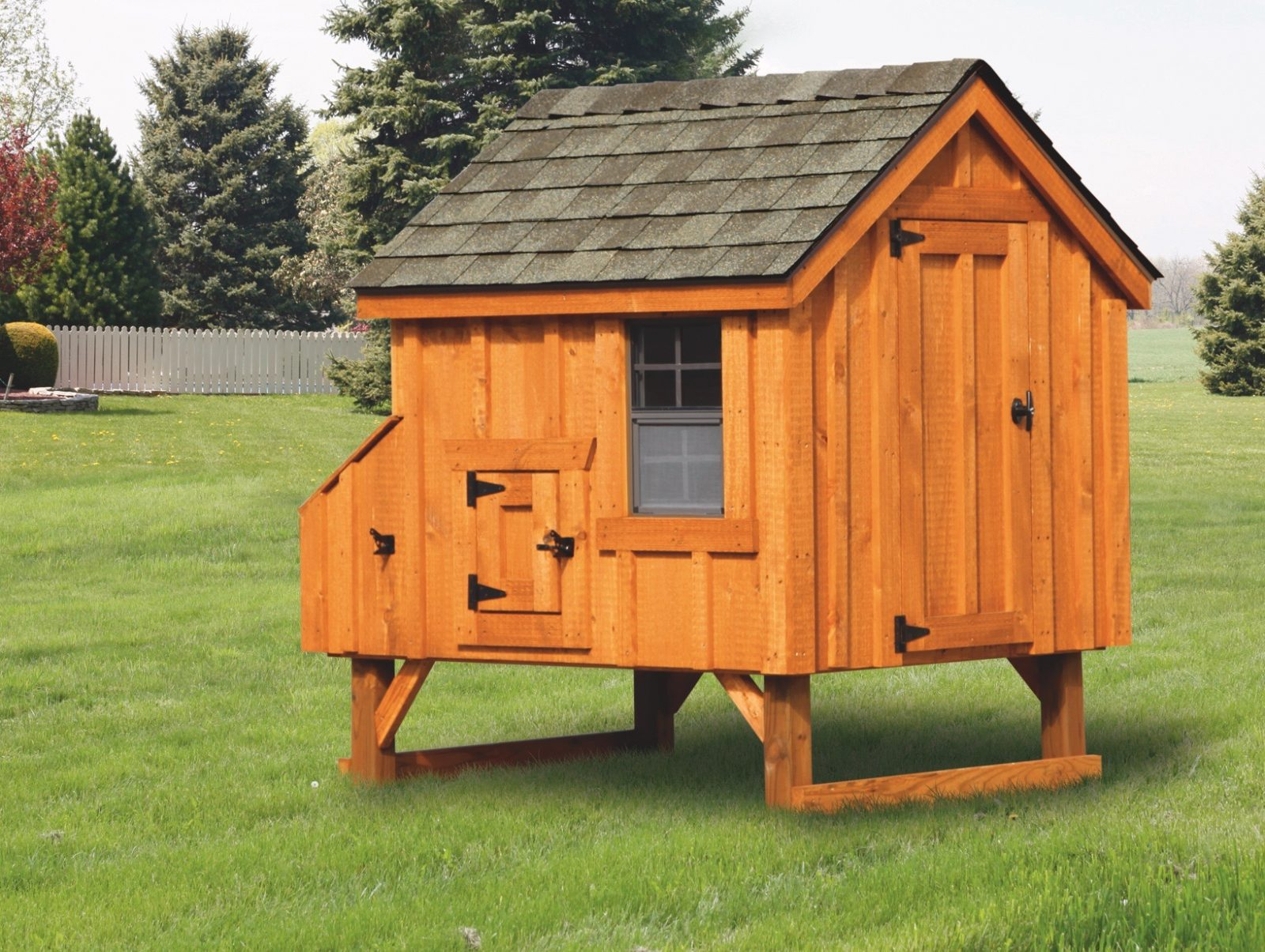 Backyard Chicken Coops Chicken Coops For Sale Online